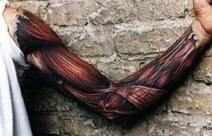 Body painting bras d'homme écorché
