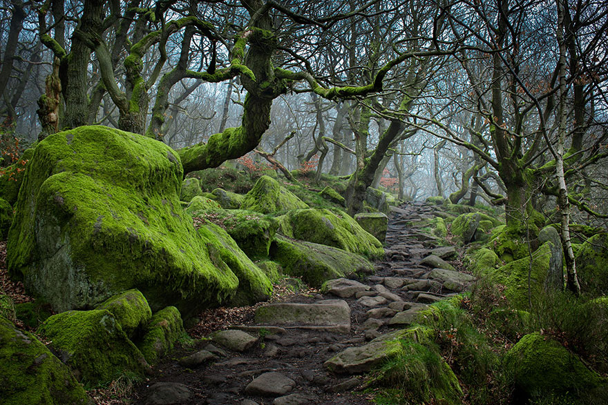 Gorges-Padley-peak-district-Angleterre