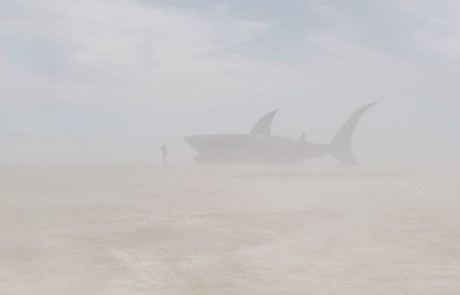 Portraits-Gabriel-de-la-Chapelle-requin-attaque-homme-brume-brouillard