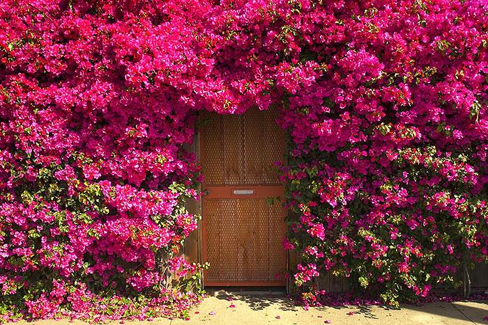 les 25 plus belles portes du monde vues par em3c