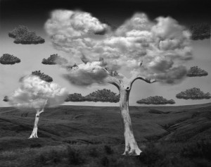 arbre-savane-nuage-cloud