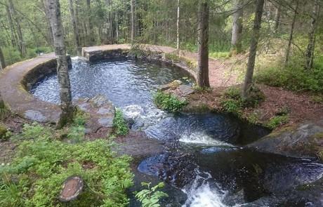 architecture-norvegienne-conte-fee-piscine-naturelle-foret