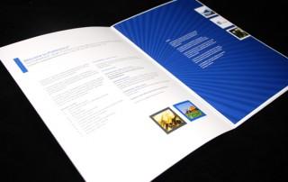 brochure-professionnelle-page-pleine-couleur-texte-photo
