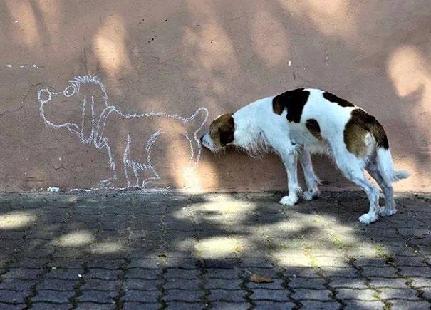 chien-renifle-tag