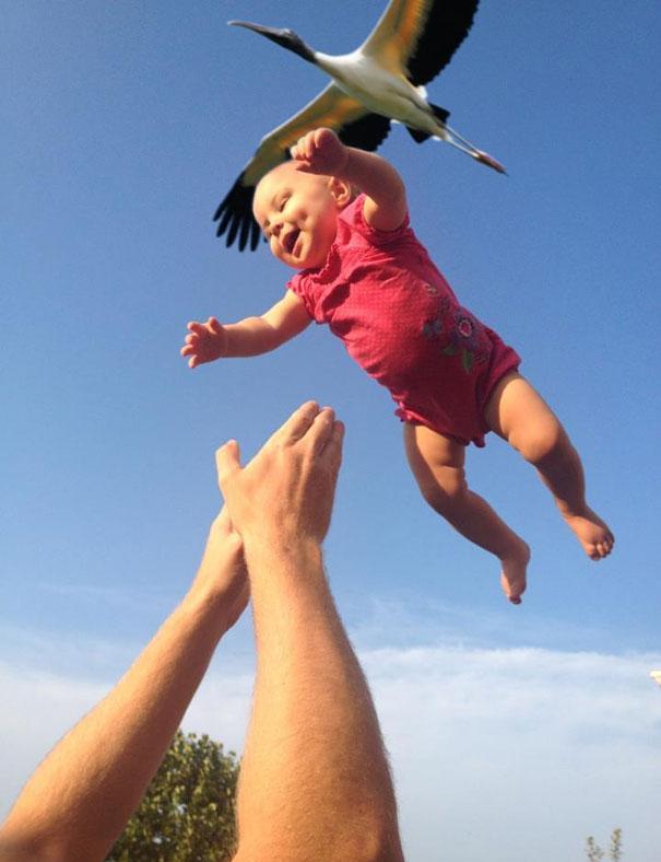 cygogne-livre-bebe