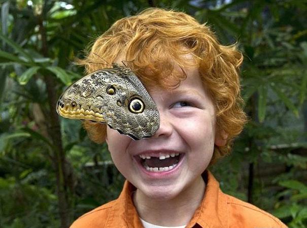 enfant-oeil-papillon