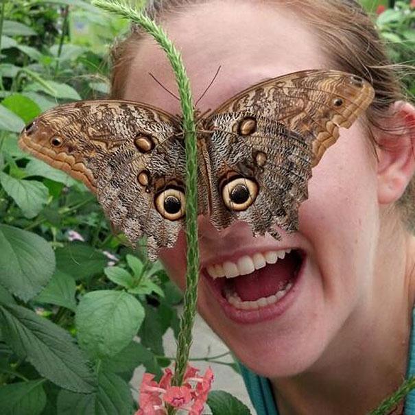 femme-visage-masque-papillon