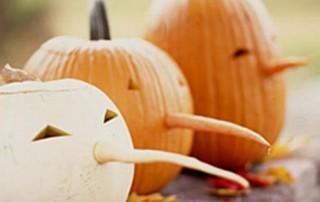 halloween-citrouille-jack-o-lantern-3-sorcieres-grands-nez