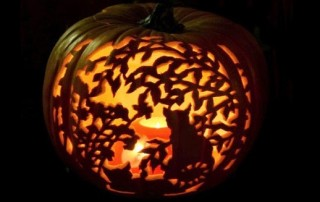 halloween-citrouille-jack-o-lantern-chat-salem
