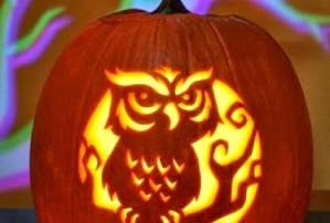 halloween-citrouille-jack-o-lantern-chouette_hibou