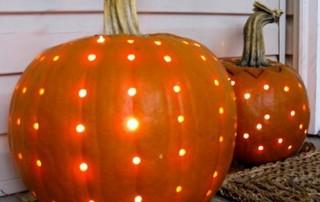 halloween-citrouille-jack-o-lantern-oursin-eclairee-interieur