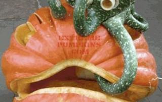 halloween-citrouille-jack-o-lantern-pieuvre-coquillage