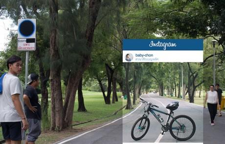instagram-verite-intox-photos-chompoo-baritone-velo-arbre-buccolique