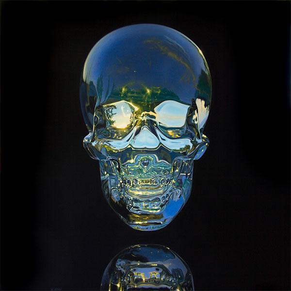 jason-de-graaf-skull1
