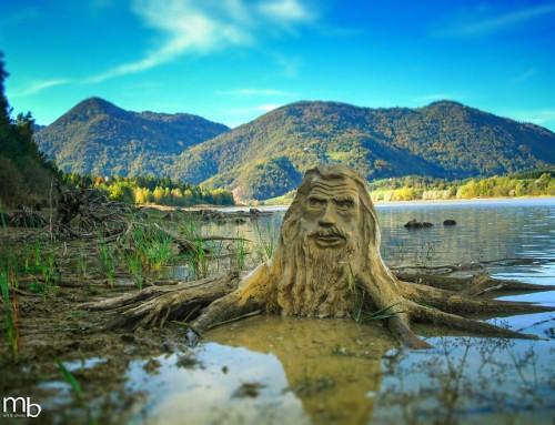 La nature féerique et ses créatures mystérieuses