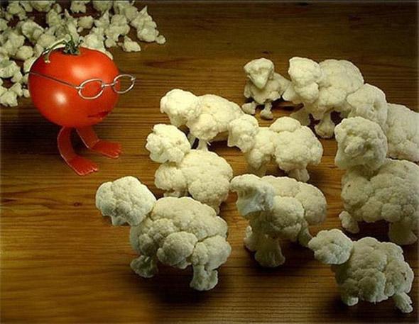 mouton-choux-tomate