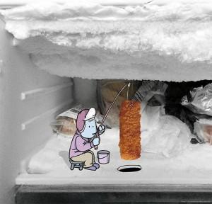 photo-invasion-instagram-lucas-levitan-peche-poisson-congelateur