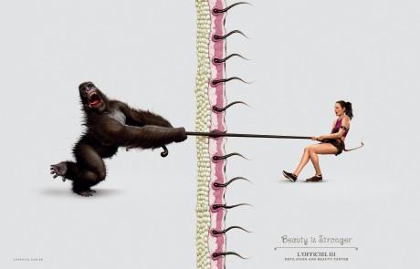 souffrir-pour-etre-belle-officiel3-gorille
