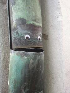 tag- gouttière -yeux