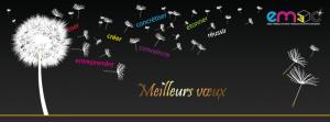voeux 2014Facebook