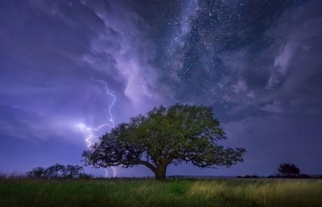 voie-lactee-etoilee-arbre-isole-eclair-nuages